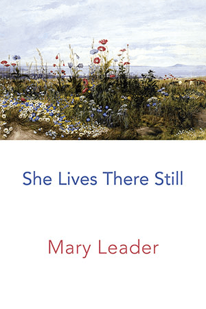 Mary Leader book cover